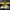 Bitlis'te 2 kilo 232 gram esrar ele geçirildi